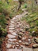 Senda del Arcediano (siglo XVII), Parque Nacional Picos de Europa, Amieva, Asturias. Spain.