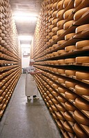 Interior of the factory and storehouse of cow cheeses. Kasereifungslager. Gstaad. Berner Oberland. Switzerland