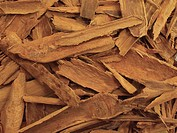 Close-up of a pile of cinnamon