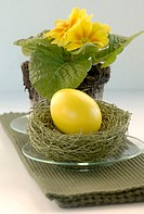 Yellow Easter egg lying on grass with primrose (thumbnail)