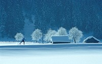 Cross-country skiing, alps
