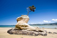 oceania, new zealand, south island, abel tasman national park, tinline bay