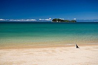 oceania, new zealand, south island, abel tasman national park, appletree bay