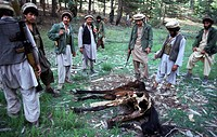afghanistan, mujahideen, northern alliance