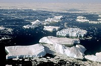 Aerial view of Icebergs and melting pack ice, Disko Bay, Greenland