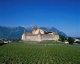 Chateau, Vineyards, Chateau Aigle, Vaud, Switzerland, Europe, Europe