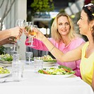 Friends toasting each other at a restaurant