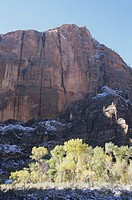 Zion Canyon National Park, vertical view, UT, USA