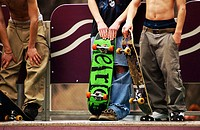 Skaters with skate boards