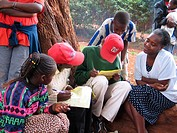Students study under a tree near Waithaka District slum area. The students are getting support from the non-governmental agency AMREF