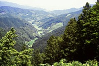High angle view of a valley, Mountain Valley, Kochi, Shikoku, Japan