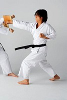 Blackbelt Doing a Front Kick