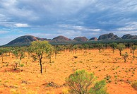 Australia, northern territories, Uluru national park (thumbnail)