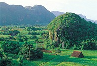 Valle de Los Vinales, Mogotes at sunset