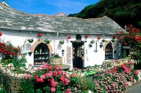 England, Cornwall, cottage in Boscastle