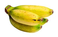 Bananas