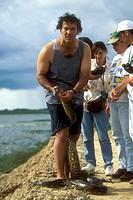 Female Green Anaconda handled by scientist Jesus/nRIVAS - Llanos Hato El Frio/nVenezuela (Eunectes  murinus)