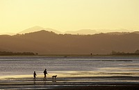 Father, Son and Dog, Knysna Lagoon, Garden Route, Western Cape, South Africa