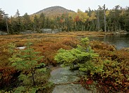 Crane-Mountain-from-Crane-Mt.-Pond,-Autumn,--Adirondacks,-NY,-Fuji