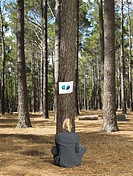 Businesswoman looking at graph in forest