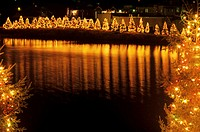 Illuminated Christmas trees standing by water
