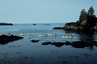 Sea Kayaking, Clayoquot Sound, West Coast Vancouver Island, Canada, elevated view