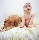 Baby girl (6-9 months) sitting on bed with dog, looking up