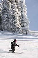 Boy (8-10) telemark skiing, side view, winter, dawn