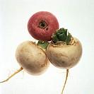 White Turnips