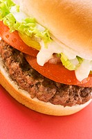 Hamburger with tomato, lettuce and mayonnaise