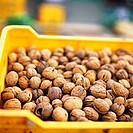 Many walnuts in crate at the market (1)