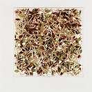 Linseed sprouts