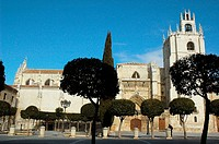 Cathedral. Palencia, Spain