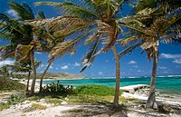 Saint Martin Island. French West Indies
