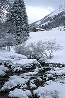 Nature, landscape with snow and mountain river
