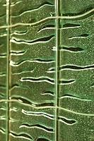 Textured print pattern