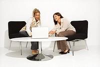 Businesswomen Using Computer