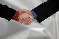 Handshake, close up.