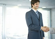Businessman shaking hands (thumbnail)