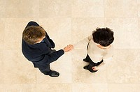 High angle view of a businessman shaking hands with a businesswoman