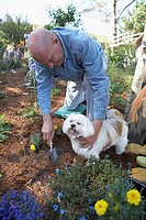 High angle view of a mature man gardening with his dog beside him