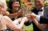 Close-up of mature couples toasting with champagne flutes