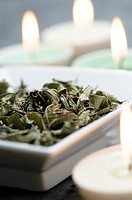 Mint dried leaves and candles