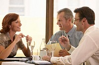 Businesswoman having lunch meeting with two businessmen, smiling