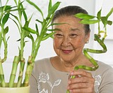 Senior Woman Planting Bamboo Shoots