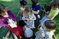 Seven children, 1-5 5-10 years old, playing with rabbits, bunnies, in the garden in summer