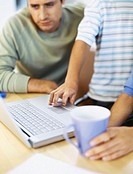 mid section view of a son and his father using a laptop
