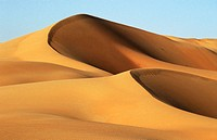 Liwa oasis in the desert. UAE (April, 2005)