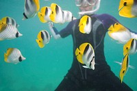 Person snorkelling with tropical fish in ocean, mid section