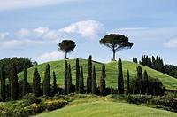 Italy, Tuscany, Tuscan landscape